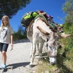 Escursione Fonza